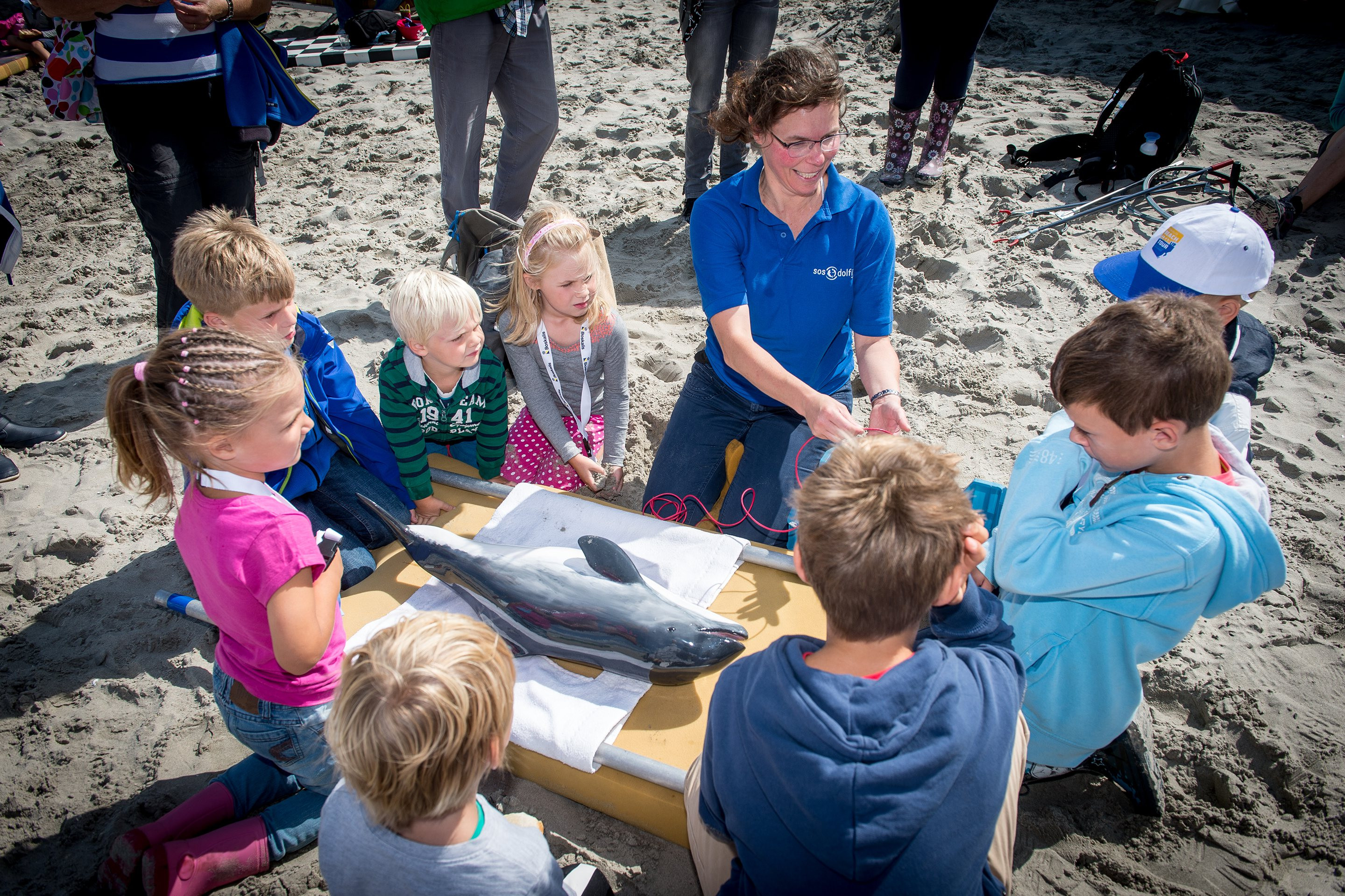 SOS Dolfijn demonstrates how to save a stranded harbor porpoise