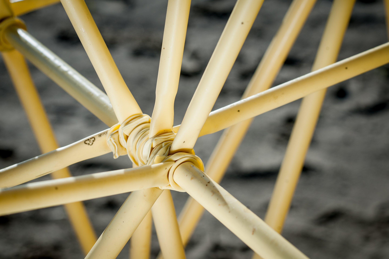 Detail of the Strandbeest